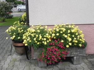 Eine Ecke von unserem Haus in Denkendorf