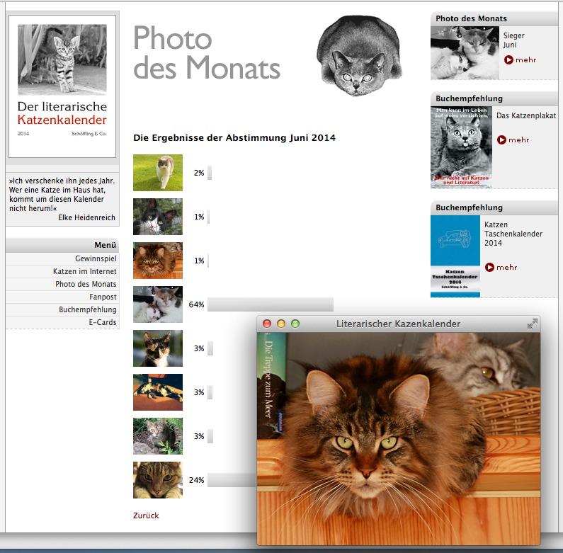 Screenshot: www.literarischer-Katzenkalender.de