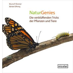 Abbildung: (c) Nicolai-Verlag