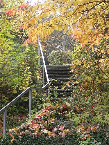 Treppe 006