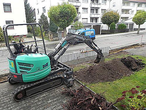 Gartenbau 004